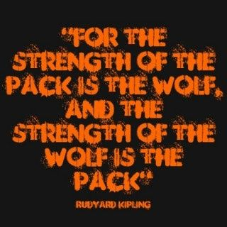 strength of the wolf is the pack